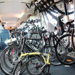 Junge Deutsche - Mobilität per Bahn - Fahrradabteil